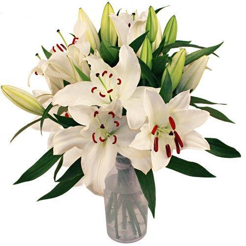 Livraison du bouquet de fleurs lys casablanca par florajet for Bouquet de lys