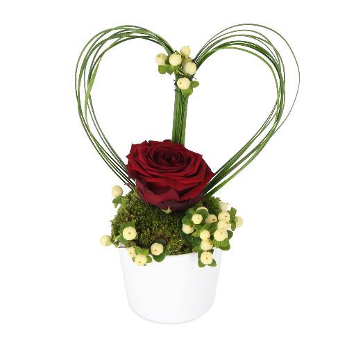 livraison composition de 3 roses rouges griotte florajet. Black Bedroom Furniture Sets. Home Design Ideas