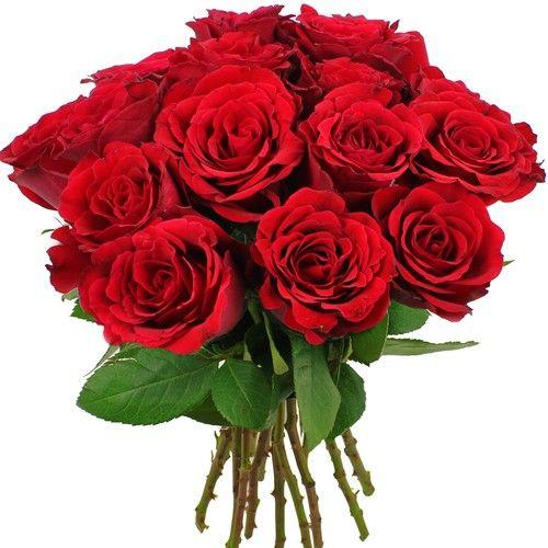 livraison du bouquet de roses amour 15 roses rouges. Black Bedroom Furniture Sets. Home Design Ideas