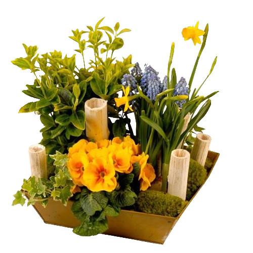 livraison de la composition florale anniversaire reinette par florajet. Black Bedroom Furniture Sets. Home Design Ideas