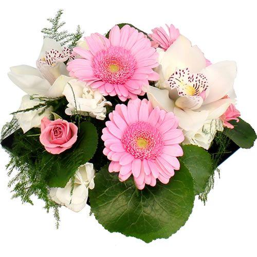 Livraison de la composition florale naissance bonbon for Livraison composition florale