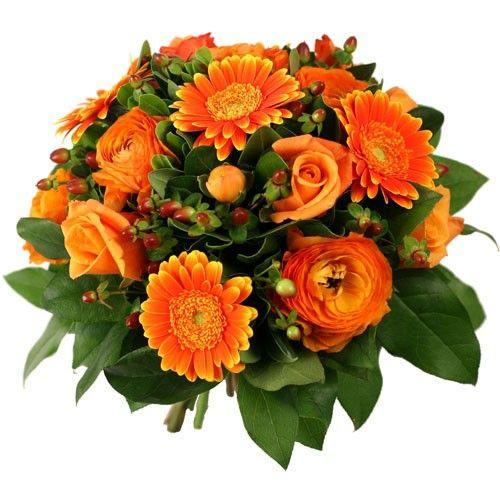 Très bon anniversaire à toi mokha 950