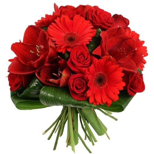 Livraison de fleurs livraison br sil for Fleurs livraison demain